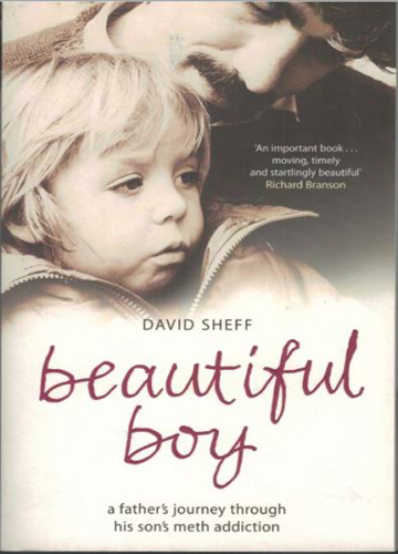 Beautiful boy : a father's journey throught his son's meth addiction.